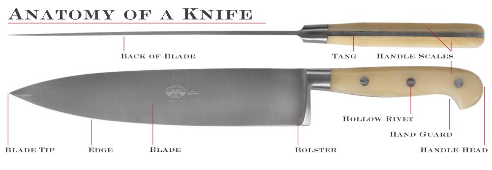 Anatomy of a Knife